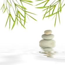 zen habits жизнь в стиле дзен