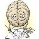 Взаимосвязь между функциями мозга и счастьем