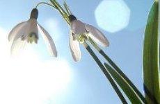 Весна – время начать новую жизнь